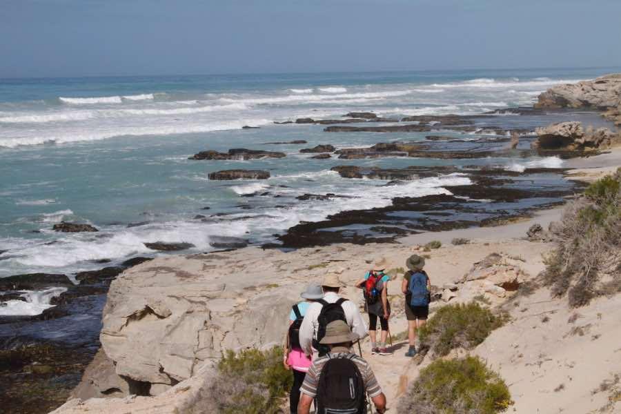Whale trail walking benefits
