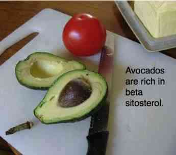 Avocado halves have many similarities with the fat in olives.