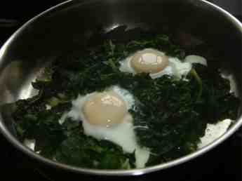 Eggs poached on spinach makes a splended banting breakfast.