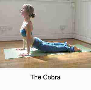 The cobra exercise to facilitate smooth lumbar facets.
