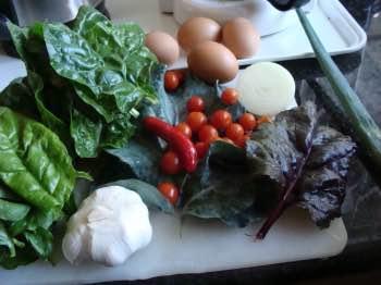 Ingredients eight colors eggs Florentine
