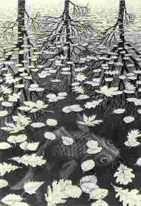 Escher's painting of fish.