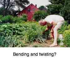 Gardening can injure the lower back and cause leg pain.