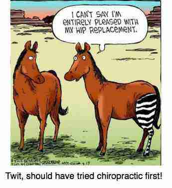 Cartoon of a horse complaining of his zebra hip replacement.