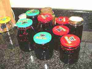 How to make mulberry jam