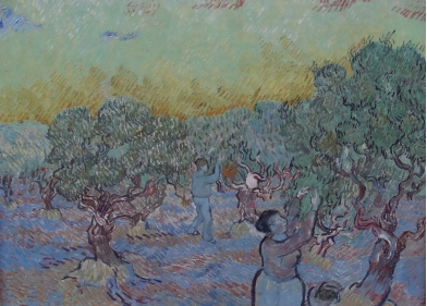 Olive orchard by Vincent van Gogh at the Kruller Muller museum.