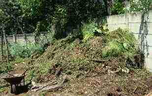 Make a compost pile.