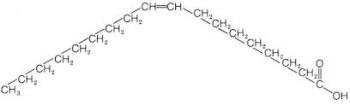 Oleic acid structure for chiropractors