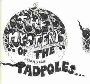 The great tadpole mystery