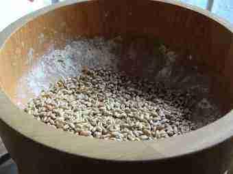 Wheat in Hawo grinder