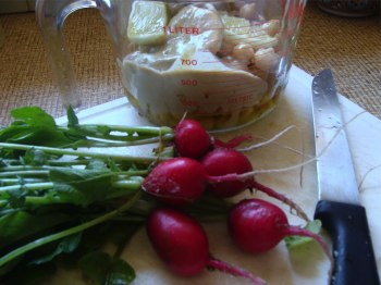 Authentic hummus recipe dip with radish.