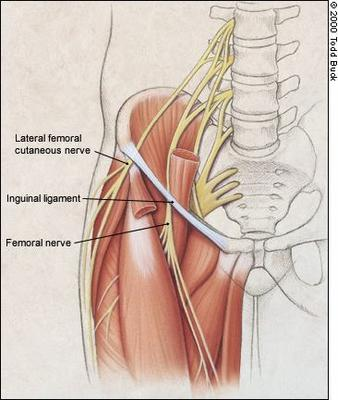 Pain in the upper groin area toward the inside front of my left leg.