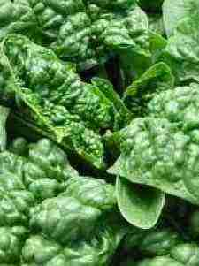 Spinach is full of anti-oxidants.