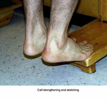 Strengthening the calf muscles is important in ankle exercises.