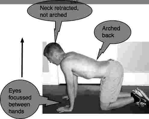 The cat and camel yoga exercises is good for the lower back and a stiff neck.