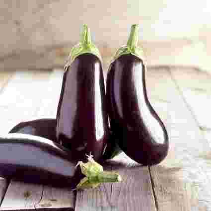 Eggplant aubergine brinjal