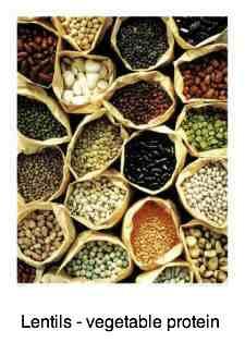 Lentils for vegetable protein.