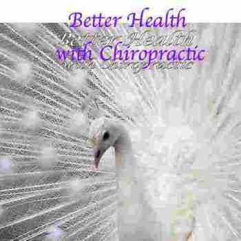 Peacock is the symbol of our newsletter, better health with chiropractic.