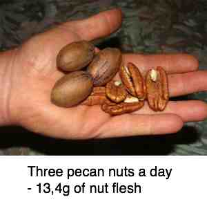 Pecan nuts three a day