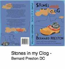 Stones in my clog by a chiropractor