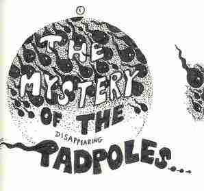 The great tadpole mystery